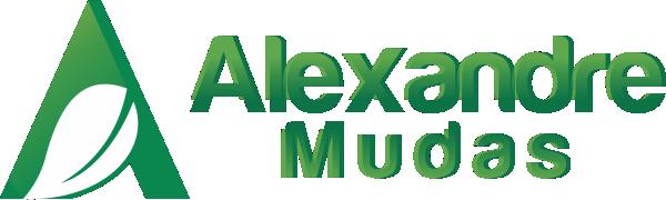 Alexandre Mudas